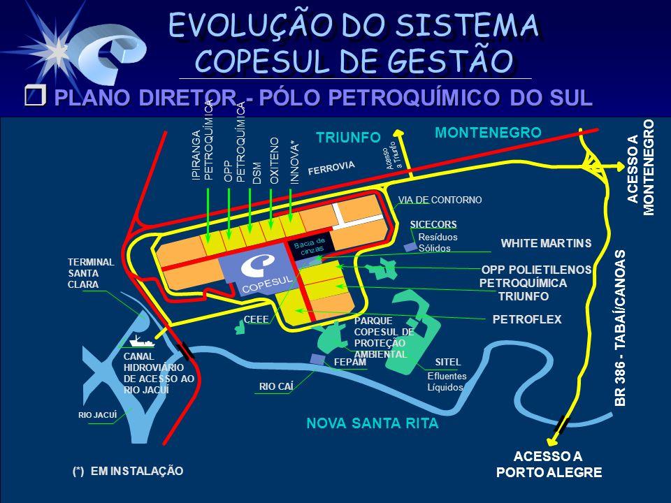 PLANO DIRETOR - PÓLO PETROQUÍMICO DO SUL
