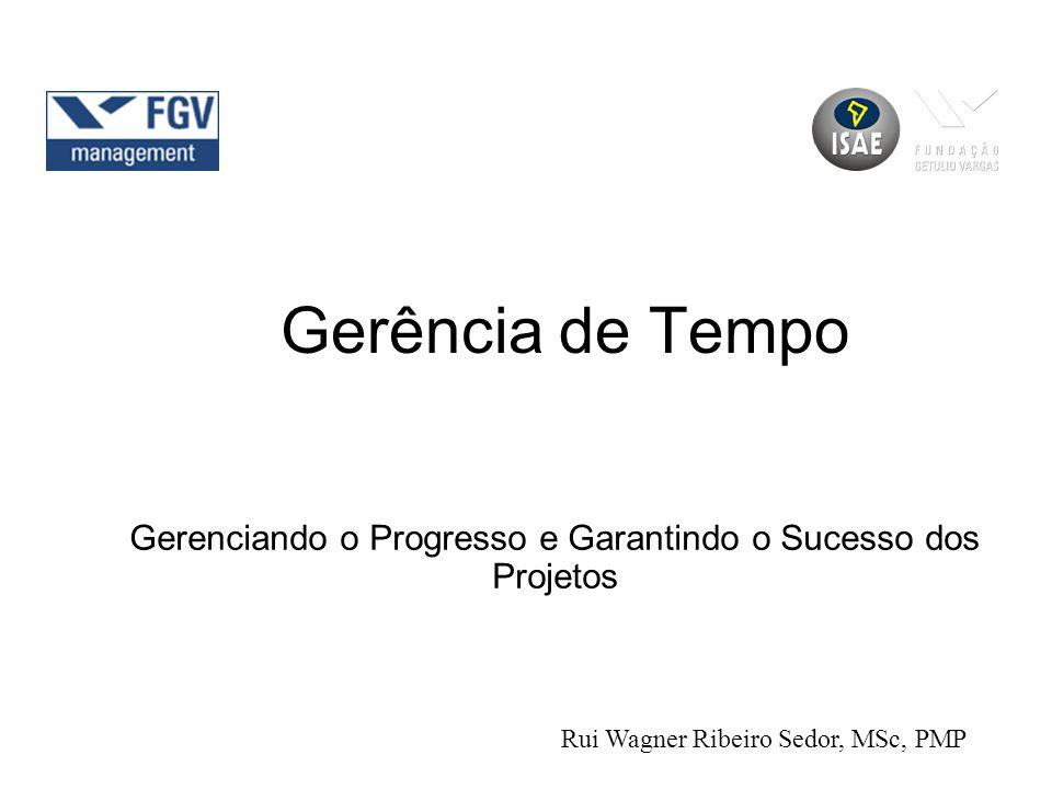 Gerenciando o Progresso e Garantindo o Sucesso dos Projetos