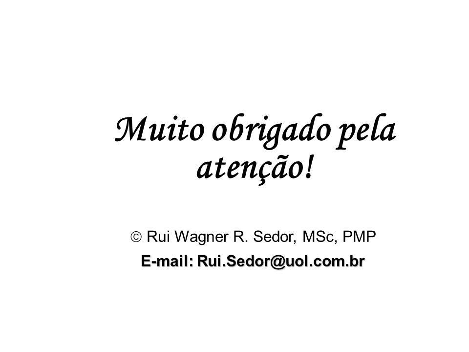 Muito obrigado pela atenção! E-mail: Rui.Sedor@uol.com.br
