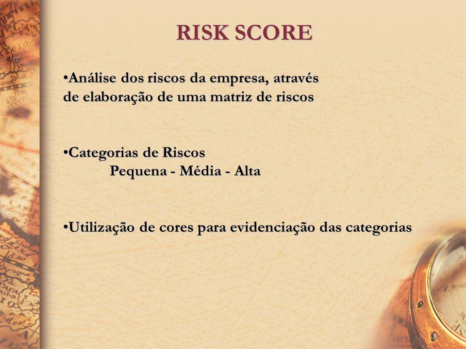 RISK SCORE Análise dos riscos da empresa, através