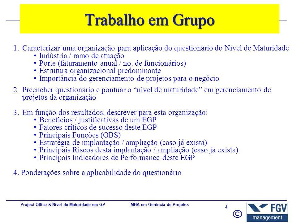 Trabalho em Grupo Caracterizar uma organização para aplicação do questionário do Nível de Maturidade.