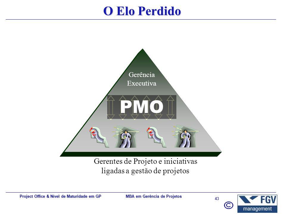 Gerentes de Projeto e iniciativas ligadas a gestão de projetos