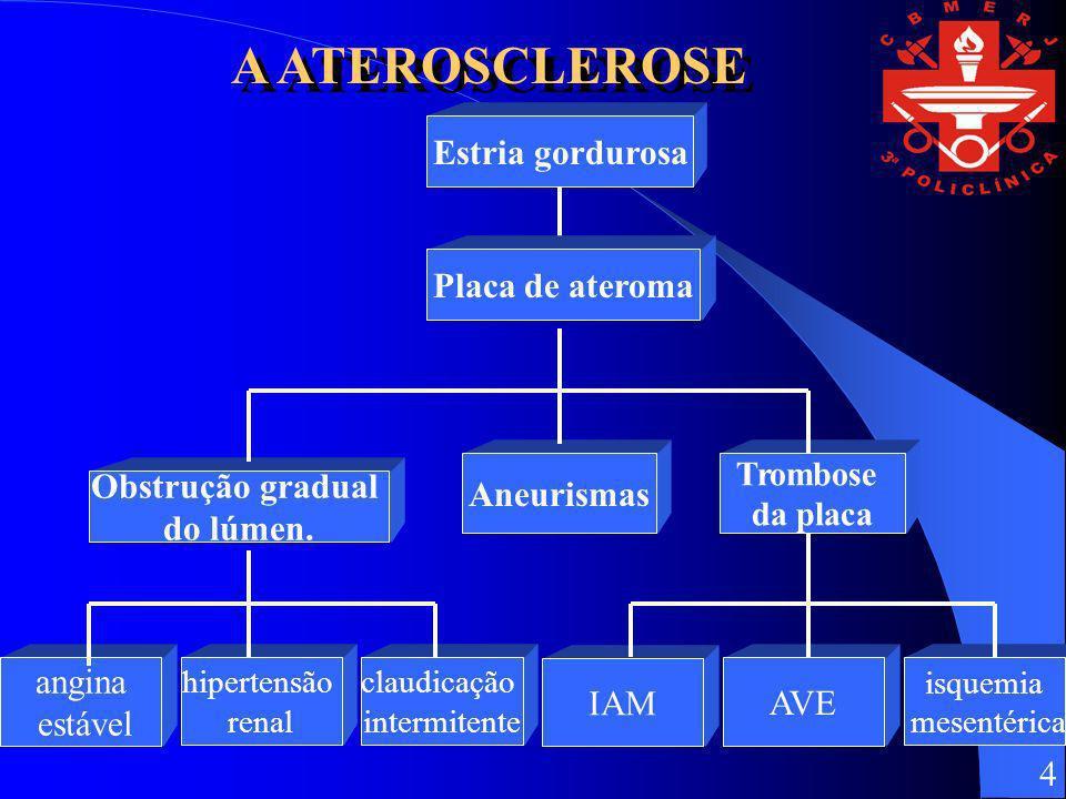 A ATEROSCLEROSE Estria gordurosa Placa de ateroma Aneurismas