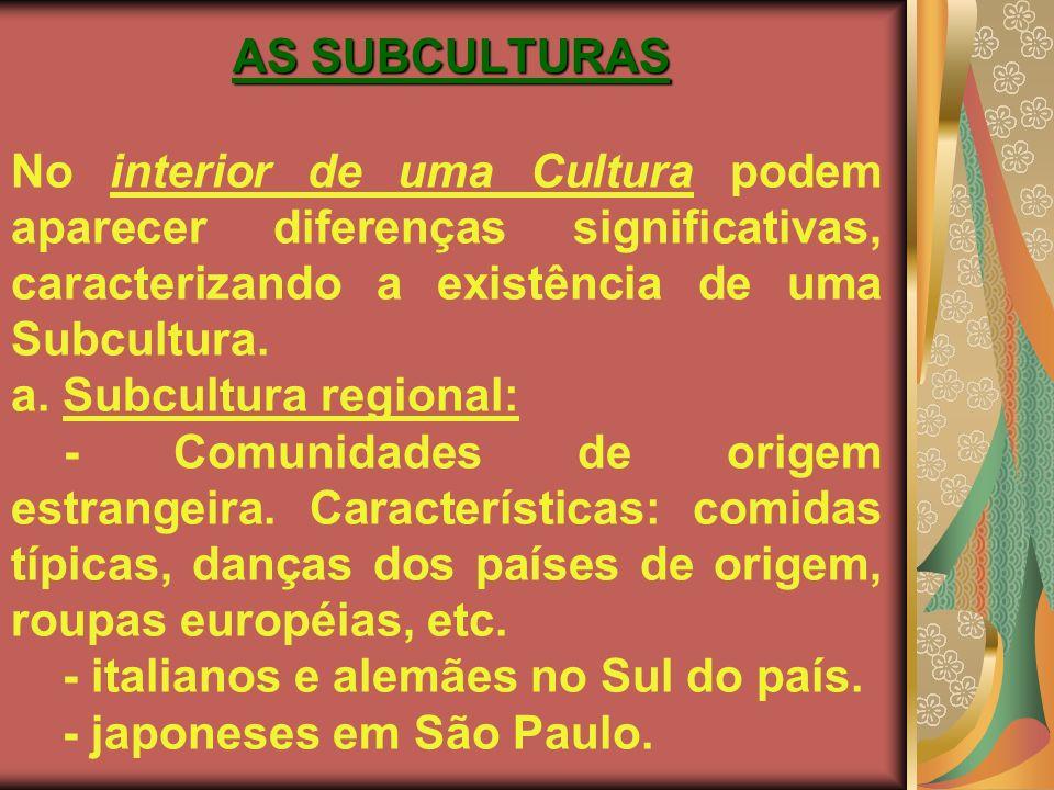 AS SUBCULTURAS No interior de uma Cultura podem aparecer diferenças significativas, caracterizando a existência de uma Subcultura.