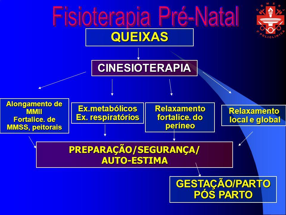 QUEIXAS CINESIOTERAPIA GESTAÇÃO/PARTOPÓS PARTO PREPARAÇÃO/SEGURANÇA/