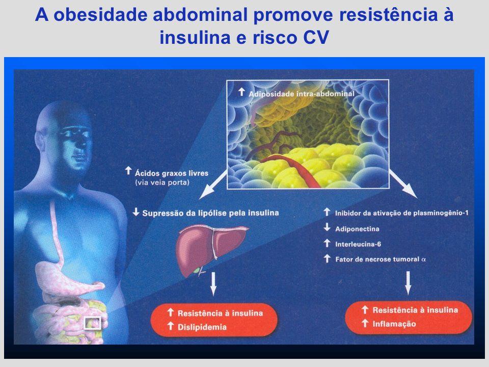 A obesidade abdominal promove resistência à insulina e risco CV