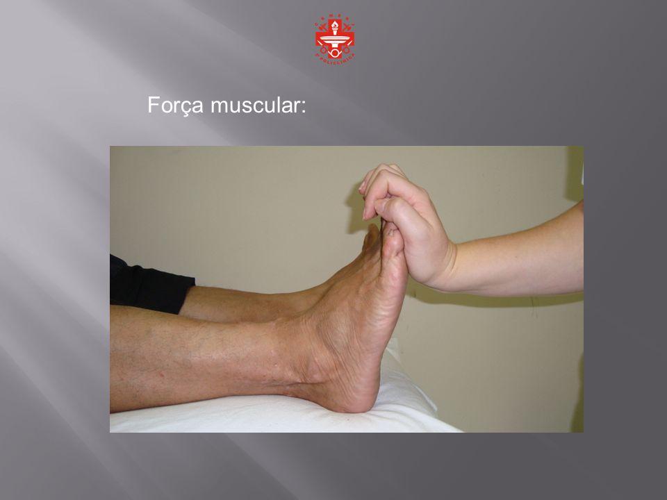 Força muscular: