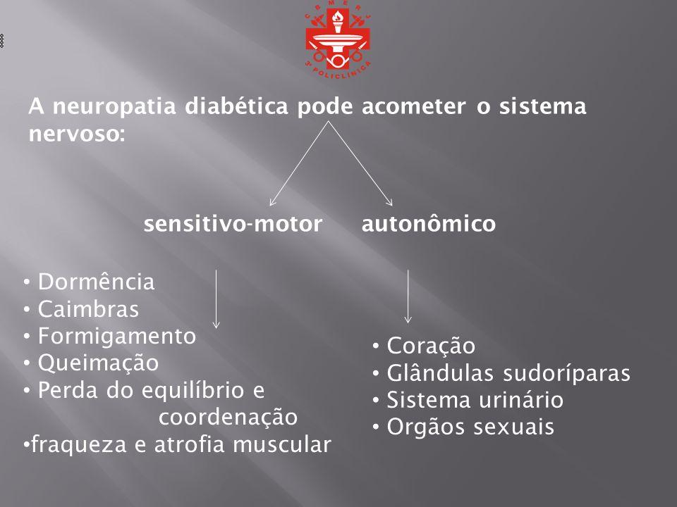 A neuropatia diabética pode acometer o sistema nervoso: