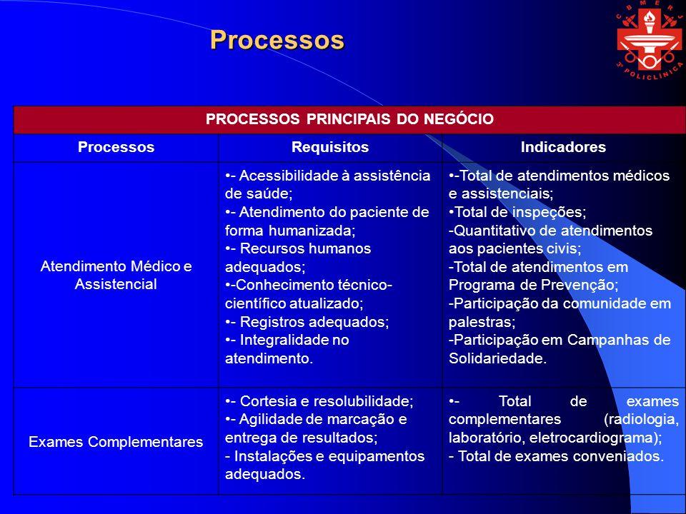PROCESSOS PRINCIPAIS DO NEGÓCIO