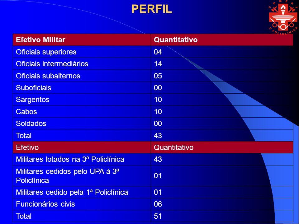 PERFIL Efetivo Militar Quantitativo Oficiais superiores 04