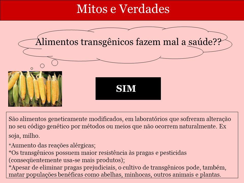 Alimentos transgênicos fazem mal a saúde