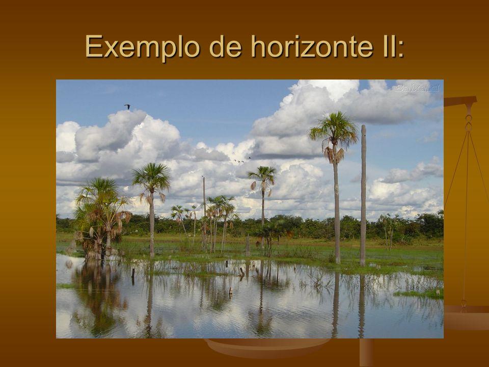 Exemplo de horizonte II: