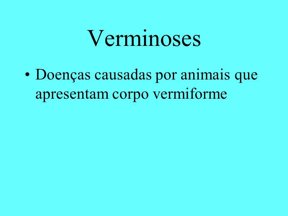 Verminoses Doenças causadas por animais que apresentam corpo vermiforme