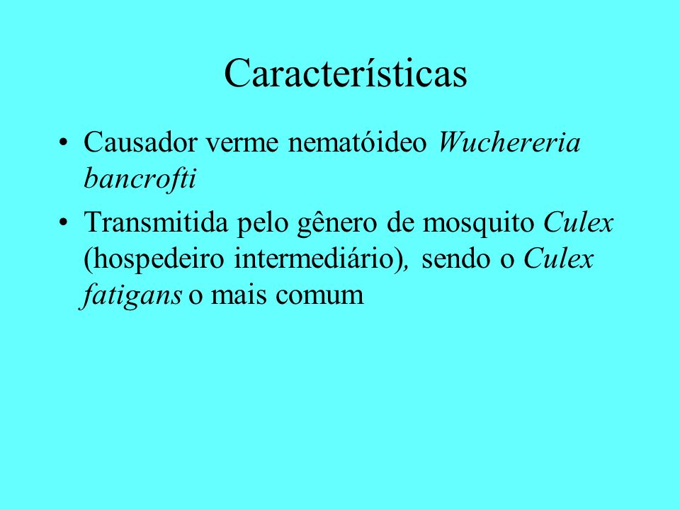 Características Causador verme nematóideo Wuchereria bancrofti