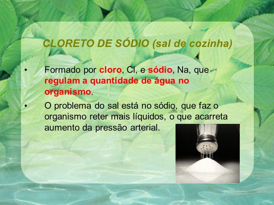 CLORETO DE SÓDIO (sal de cozinha)