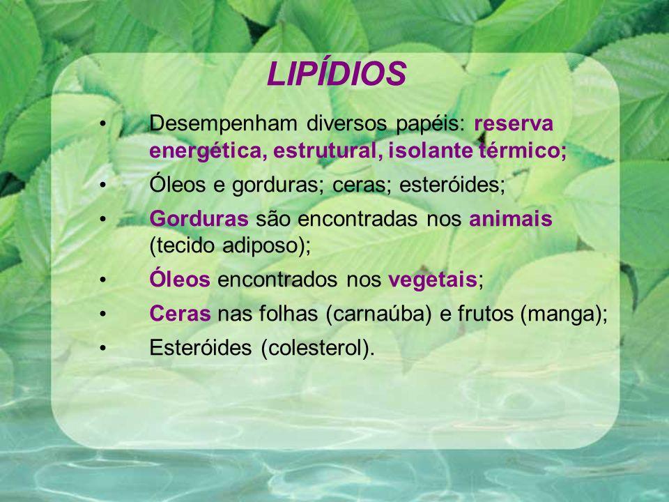 LIPÍDIOS Desempenham diversos papéis: reserva energética, estrutural, isolante térmico; Óleos e gorduras; ceras; esteróides;