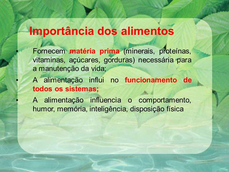 Importância dos alimentos
