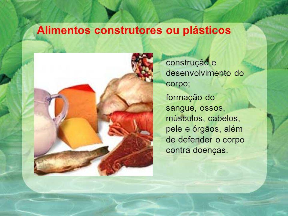 Alimentos construtores ou plásticos