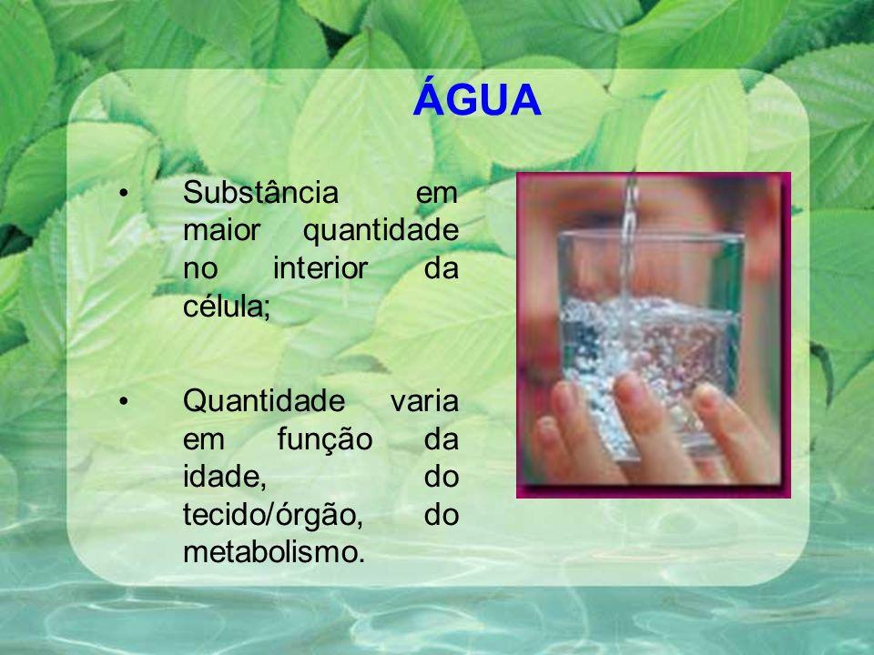 ÁGUA Substância em maior quantidade no interior da célula;