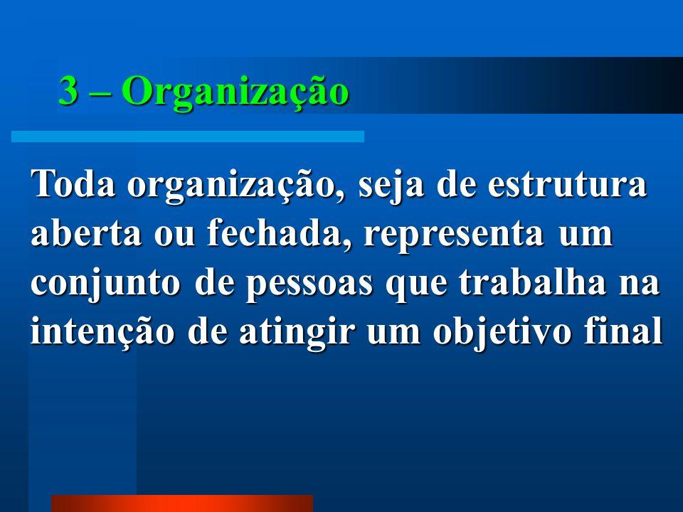 3 – Organização