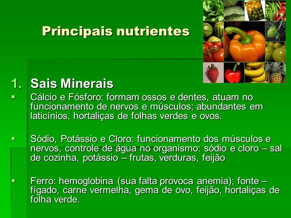Principais nutrientes