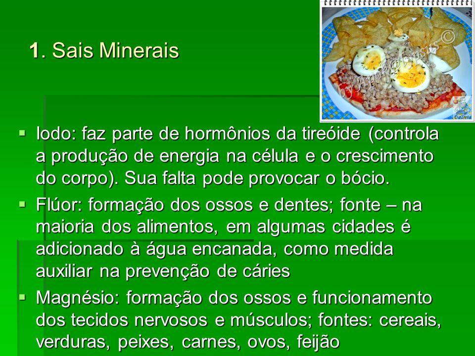 1. Sais Minerais