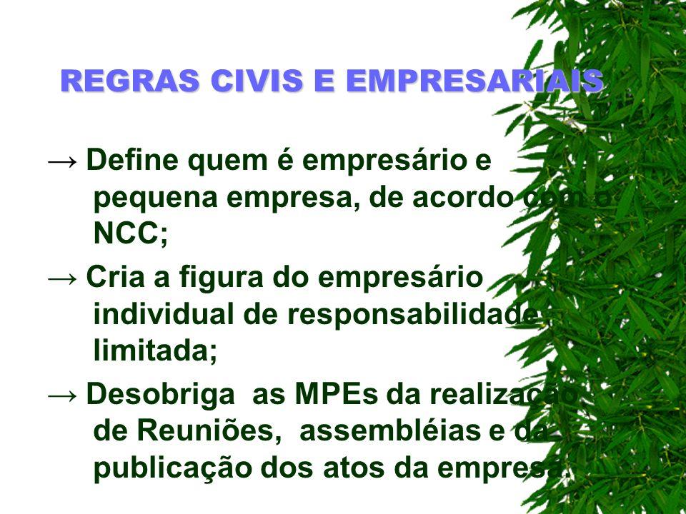 REGRAS CIVIS E EMPRESARIAIS