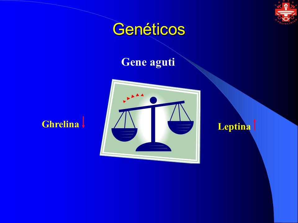 Genéticos Gene aguti Ghrelina Leptina