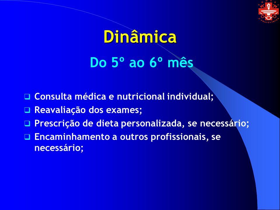 Dinâmica Do 5º ao 6º mês Consulta médica e nutricional individual;