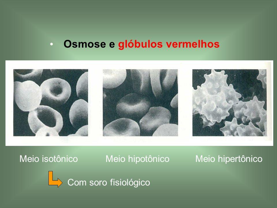 Osmose e glóbulos vermelhos