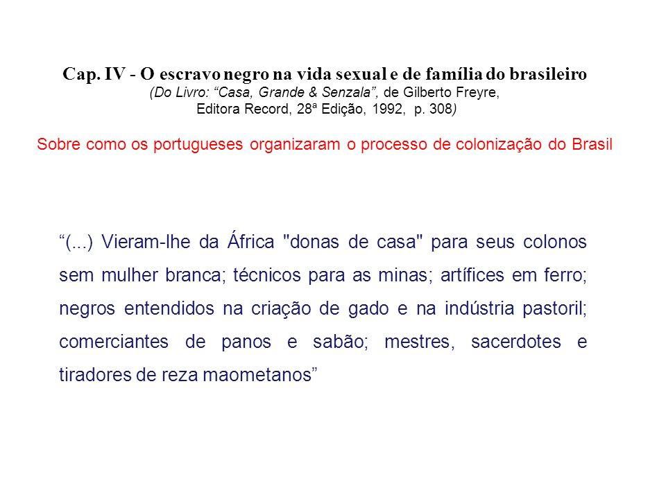 Cap. IV - O escravo negro na vida sexual e de família do brasileiro