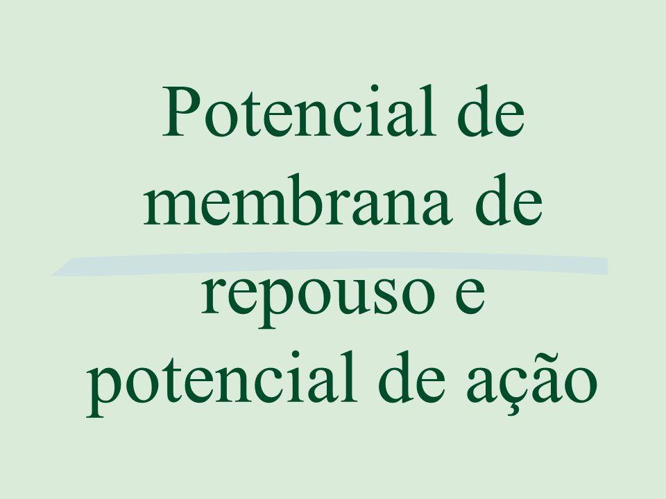 Potencial de membrana de repouso e potencial de ação