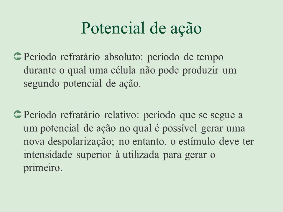 Potencial de ação Período refratário absoluto: período de tempo durante o qual uma célula não pode produzir um segundo potencial de ação.