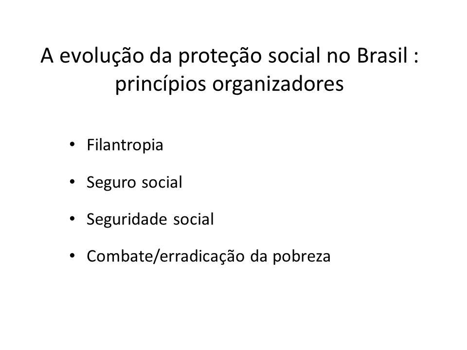 A evolução da proteção social no Brasil : princípios organizadores