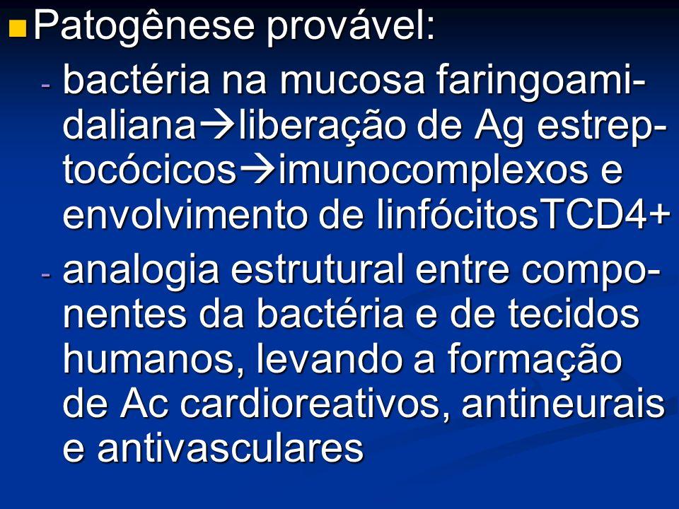 Patogênese provável:bactéria na mucosa faringoami- dalianaliberação de Ag estrep- tocócicosimunocomplexos e envolvimento de linfócitosTCD4+