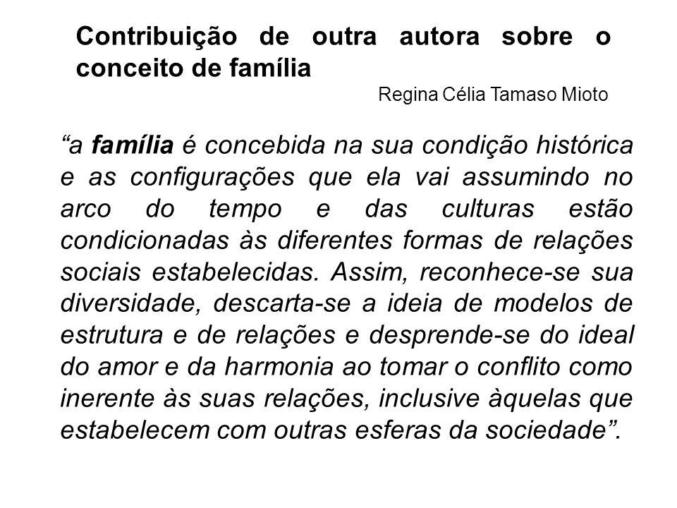 Contribuição de outra autora sobre o conceito de família