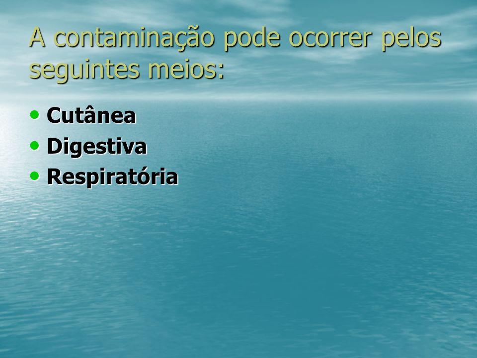 A contaminação pode ocorrer pelos seguintes meios: