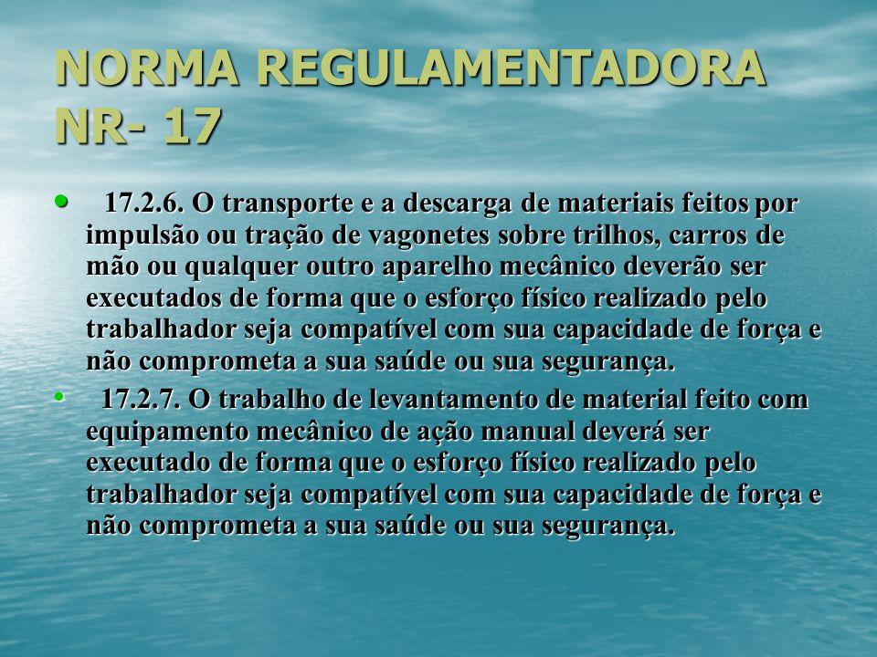 NORMA REGULAMENTADORA NR- 17