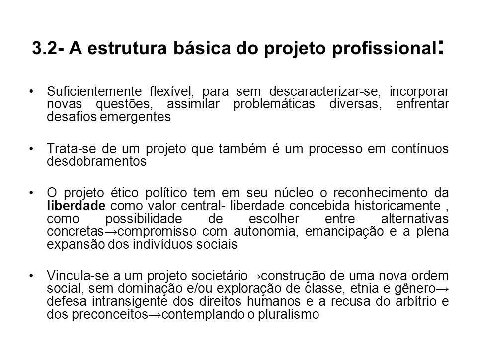 3.2- A estrutura básica do projeto profissional: