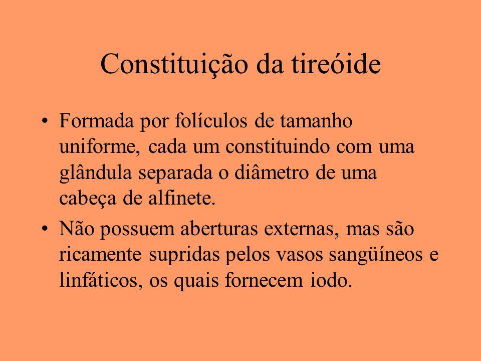 Constituição da tireóide