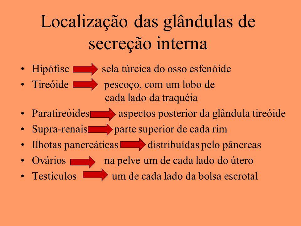 Localização das glândulas de secreção interna