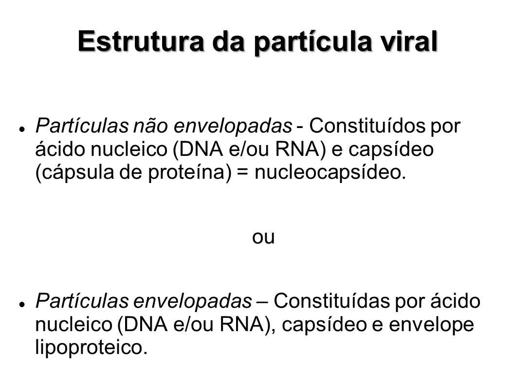 Estrutura da partícula viral