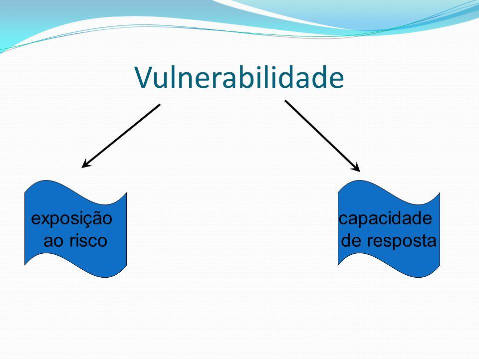 Vulnerabilidade exposição ao risco capacidade de resposta