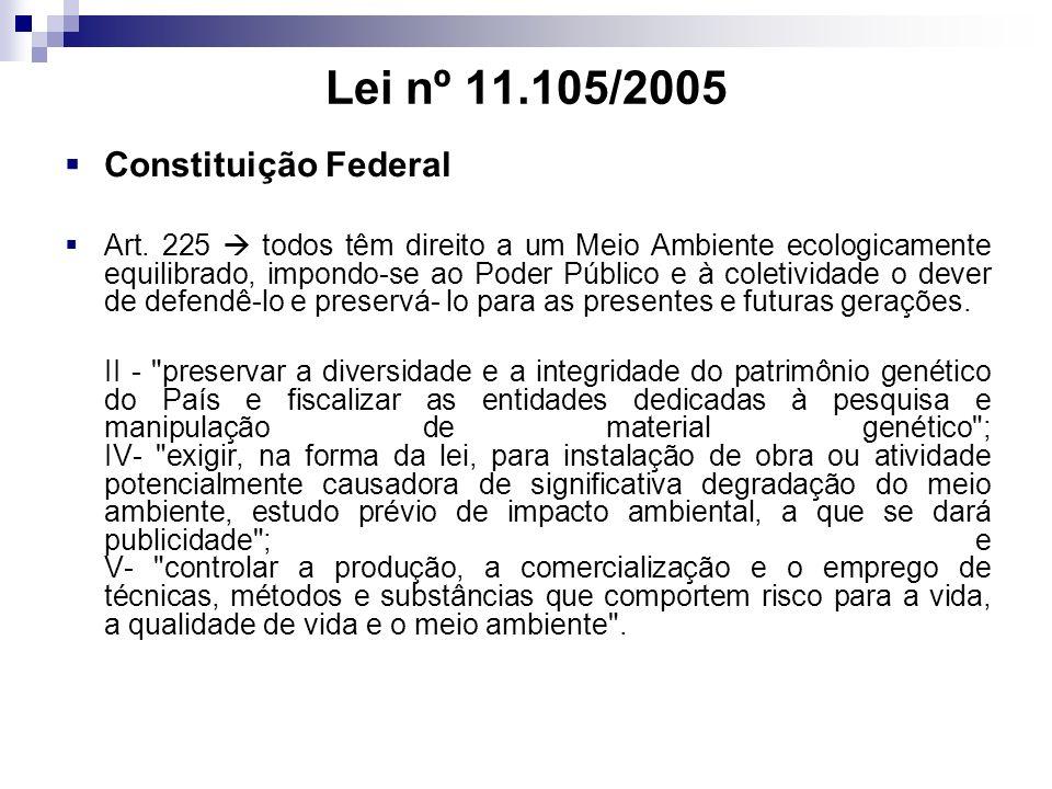 Lei nº 11.105/2005 Constituição Federal