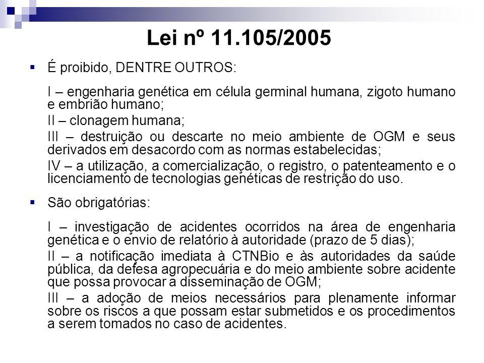 Lei nº 11.105/2005 É proibido, DENTRE OUTROS: