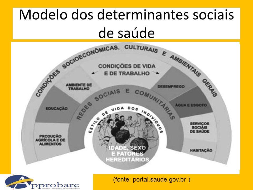 Modelo dos determinantes sociais de saúde