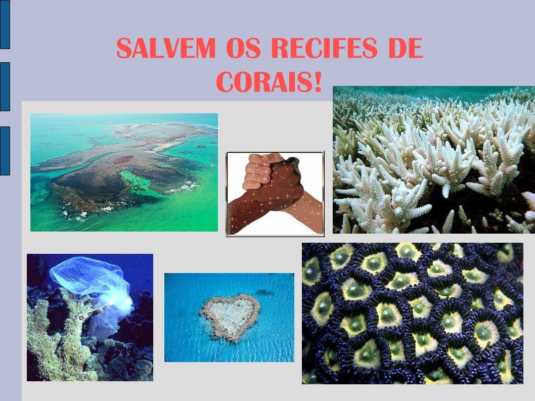 SALVEM OS RECIFES DE CORAIS!