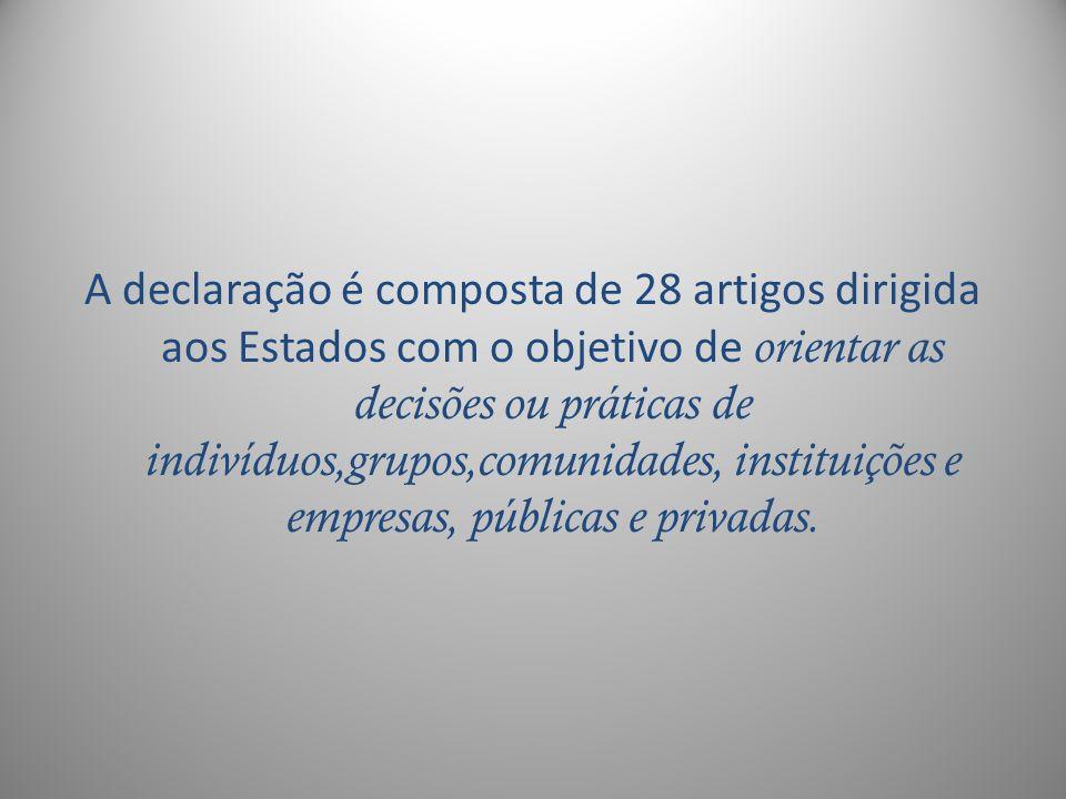 A declaração é composta de 28 artigos dirigida aos Estados com o objetivo de orientar as decisões ou práticas de indivíduos,grupos,comunidades, instituições e empresas, públicas e privadas.