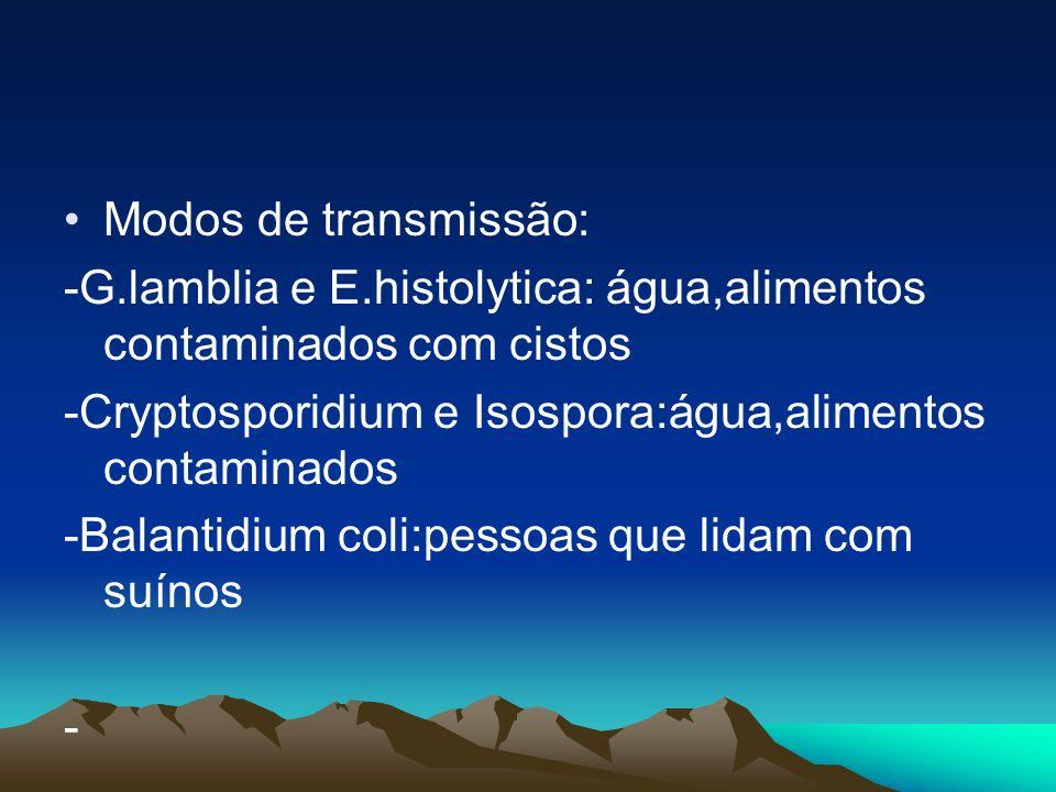Modos de transmissão: -G.lamblia e E.histolytica: água,alimentos contaminados com cistos. -Cryptosporidium e Isospora:água,alimentos contaminados.