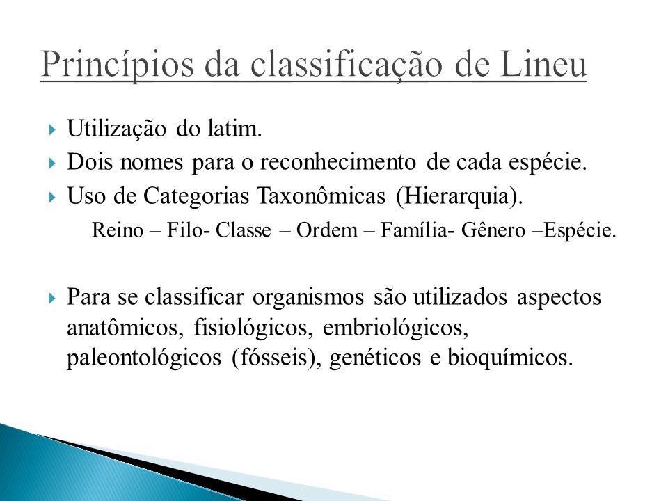Princípios da classificação de Lineu